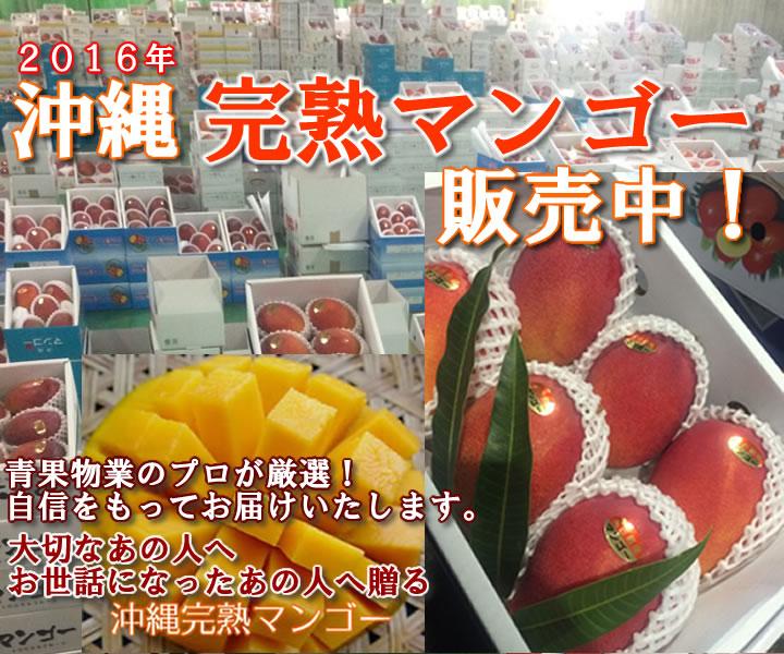 沖縄マンゴー通販 お取り寄せ
