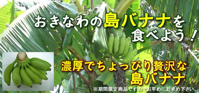 沖縄 島バナナの販売