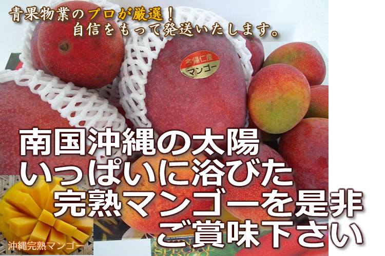 沖縄完熟マンゴー通販