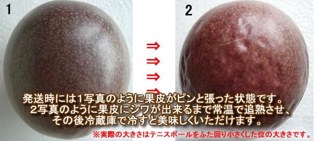 沖縄パッションフルーツ販売