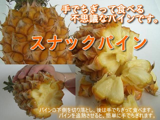 沖縄スナックパイン販売