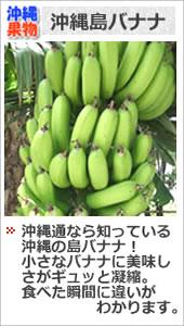 沖縄 島バナナ
