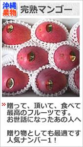 沖縄完熟マンゴー